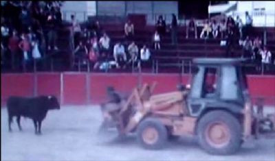 Boğaya bulldozerli işkence