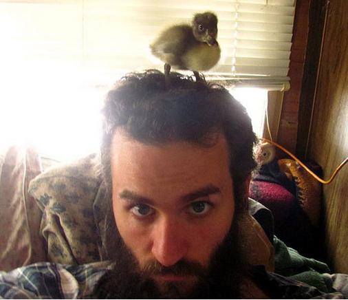 Sakalında ördek besleyen adamın ilginç hikayesi