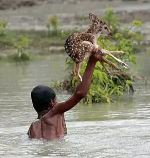 Ölümüne kurtarma! İşte insanlığın fotoğrafı