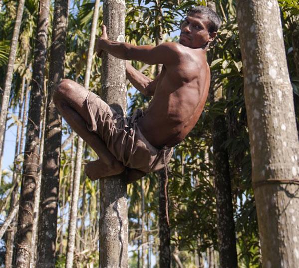 Maymun Kral Hanuman Hindistanda vücut buldu!