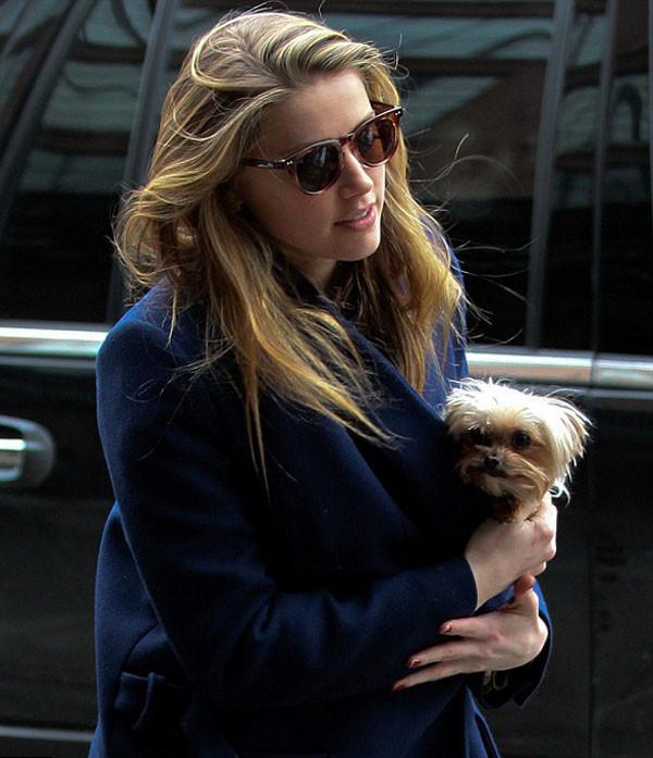 Ünlü oyuncu köpeği ile New Yorkda görüntülendi