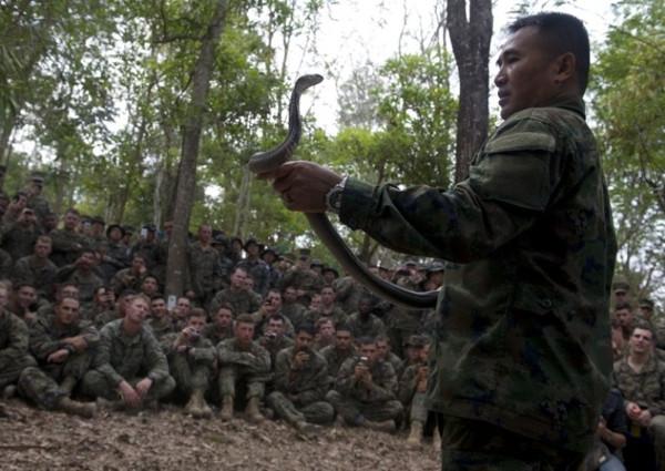 Askerlere kobra kanı içerek eğitim