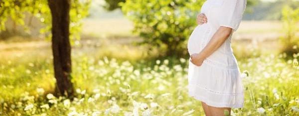 Erken yaşta annelikte birincilik Niğde'de