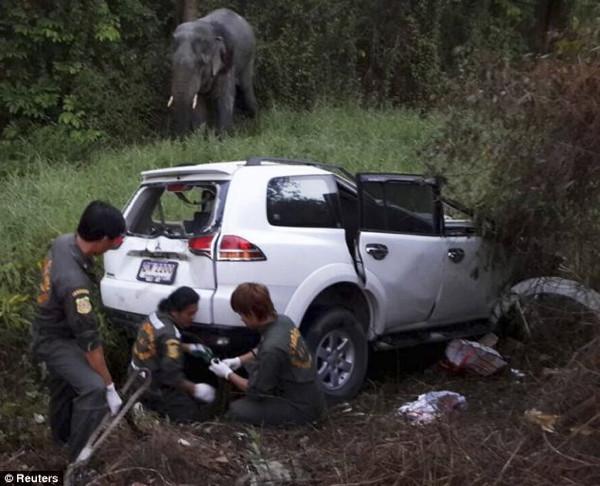Fillerin dehşet anları