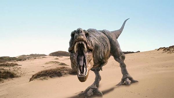70 milyon yaşında dinazor fosili bulundu