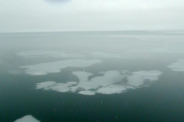 Van Gölü'nde şaşırtan manzara