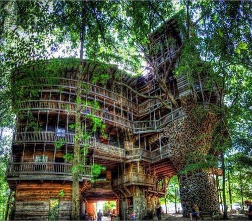 Yaşamak isteyeceğiniz en güzel 33 ağaç ev