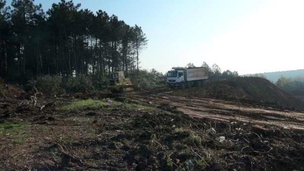 Sevgililer Ormanı kamyonlar ormanına dönüştü!