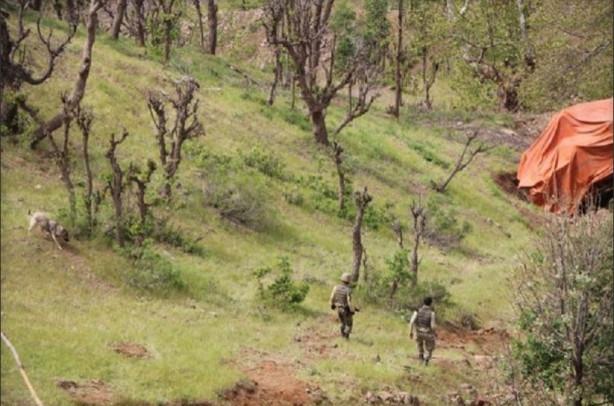 3 askerin şehit olduğu kirpi, 150 metrelik uçuruma yuvarlanmış
