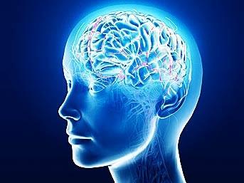 Beynin de cinsiyeti var