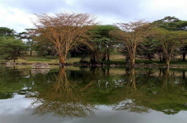 Kenya'nın 'büyüleyen gölü'