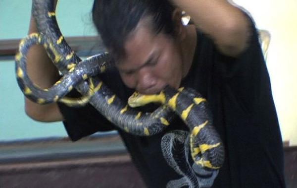Yılanlarla iç içe bir yaşam!