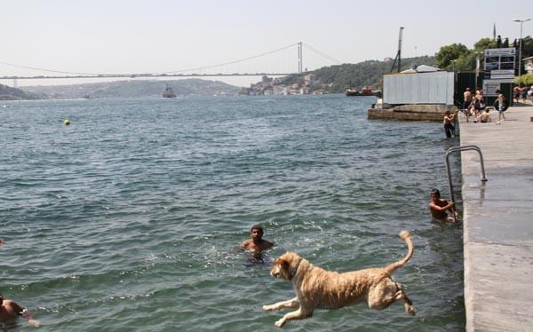 İstanbul 39 dereceyi gördü