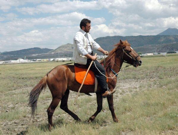 Yılkı at tutkusu