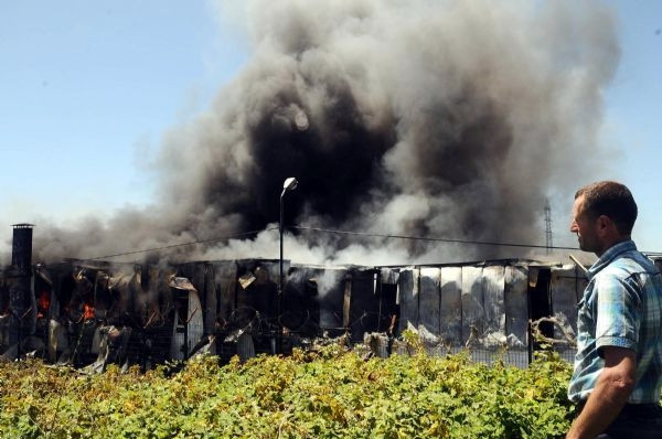 Hadımköy'de büyük yangın