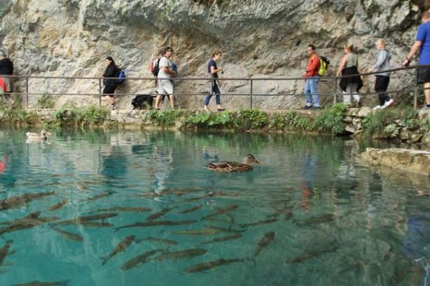 Plitvice Milli Parkı görenleri büyülüyor