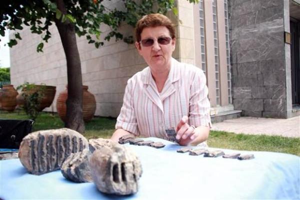 Samsun'da 2 milyon yıllık mamut fosili