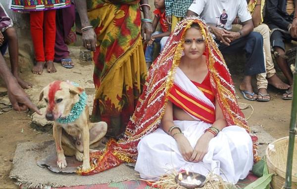 18 yaşındaki Hintli kız köpekle evlendi