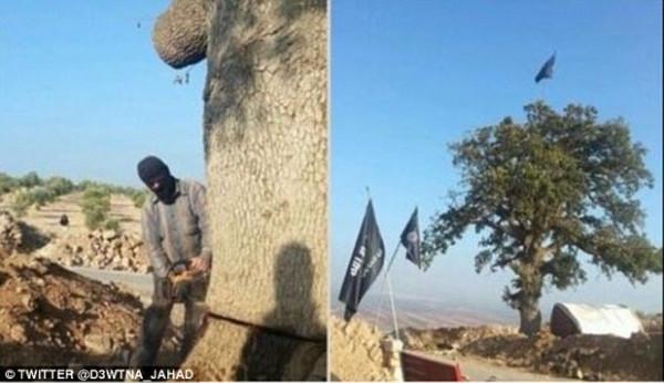 IŞİD militanlarının havuz keyfi!