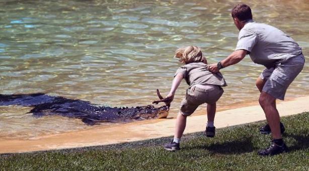 'Timsah Avcısı'nın oğlu babasının izinde