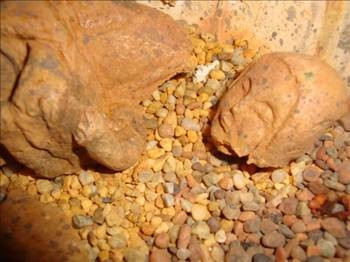 Türk piramitleri bütün ezberleri bozacak