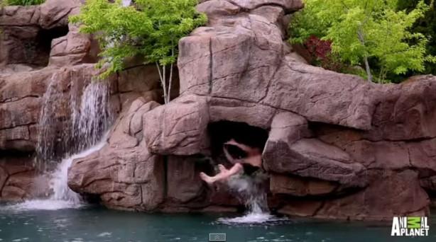 2 milyon dolarlık havuz var