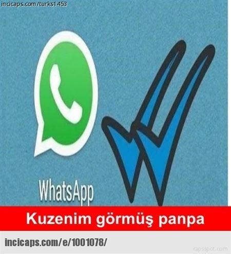 WhatsApp'ta mavi tik capsleri