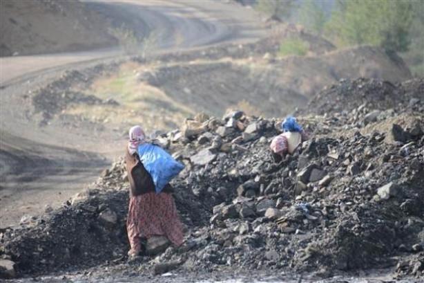 Facia ocağından kömür topluyorlar
