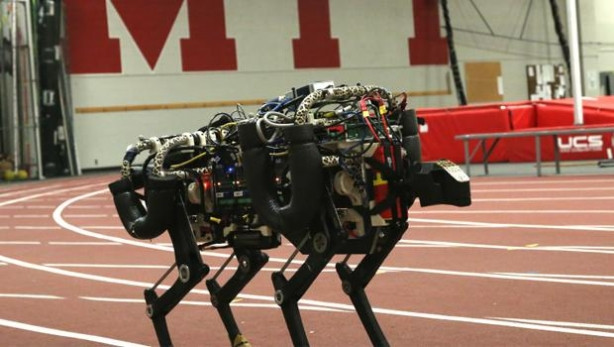 Robot Çita
