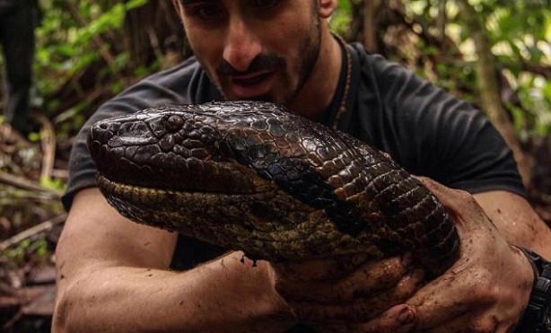 Dev anakondayı böyle görüntüledi