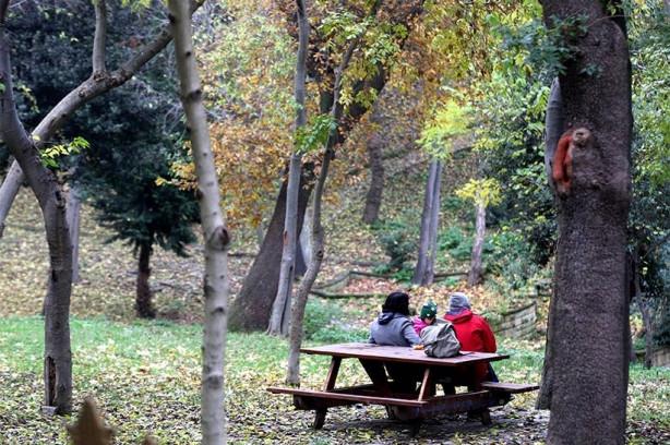 Yıldız Parkı, pazar gezmesi için iyi bir alternatif