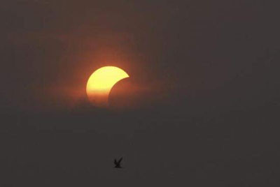 Dünya güneş tutulmasını böyle izledi