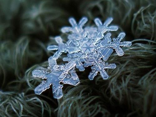 Kar tanelerinin eşsiz mucizesi