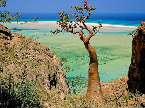 Yeryüzünün gizemli adası