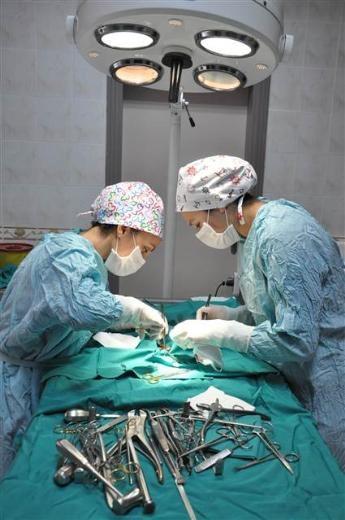 Kargayı ameliyatla kurtardılar