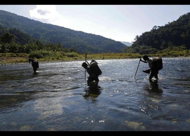 Nagalar avlanıyor
