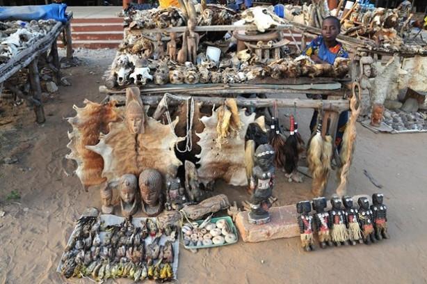 Büyücü ve şarlatanların iskelet pazarı