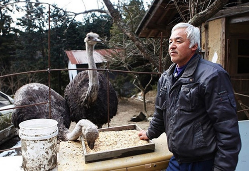 Japonların iyilik meleği Fukuşima'ya geri döndü