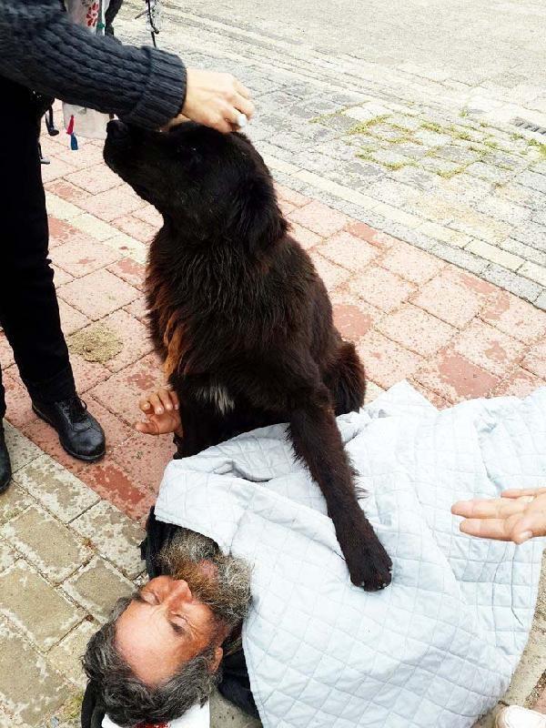 Köpeği 'Yaren' bir an olsun yanından ayrılmıyor