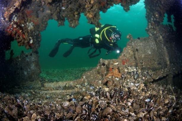 Çanakkale'nin en derin trajedisi