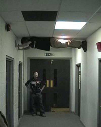 Evcil akrobatlar !