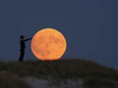 Ayı hiç böyle görmediniz