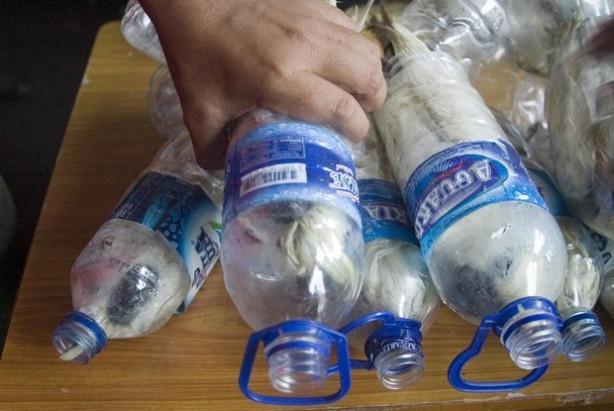 Boş su şişesinde hayvan kaçakçılığı