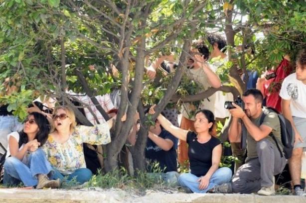 Gezi Parkı olayları neden ve nasıl başladı, neler yaşandı?