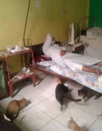 Mısır'daki hastanelerin içler acısı durumu
