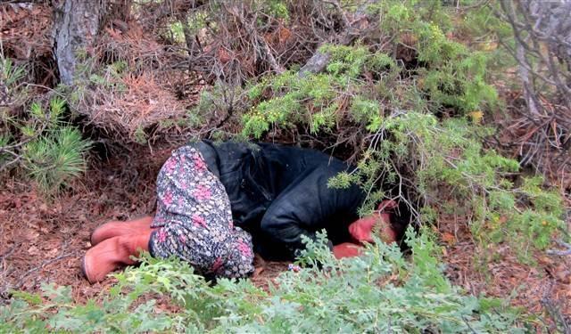 Ormanda kaybolan hamile kadın 21 saat sonra bulundu