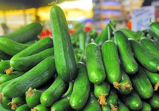 Salatalığın faydaları saymakla bitmez