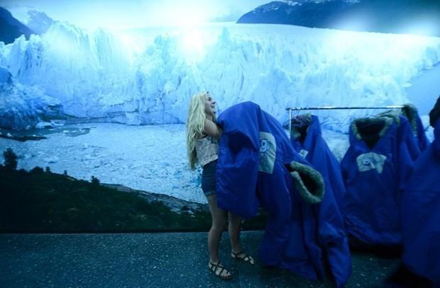 Sıcaklardan bunalan buzdan bara koşuyor!