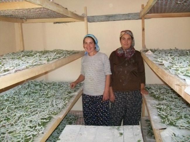 Evlerinde böcek yetiştirerek 5 bin lira kazandılar