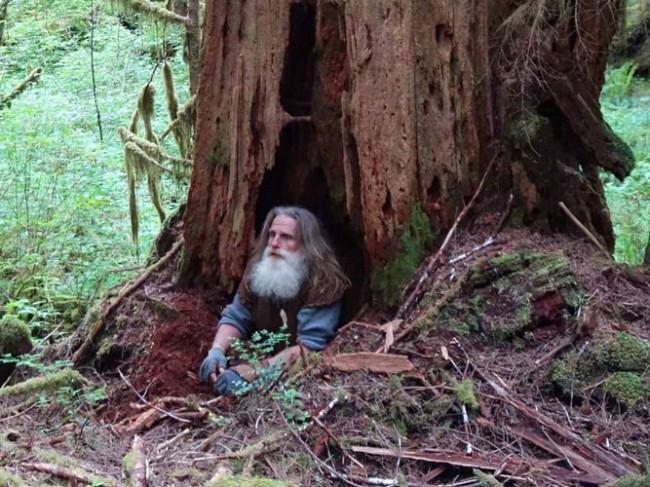 Yıllardır ağaç köklerinde yaşıyor